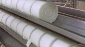 在一条线的乳酪模子用里面凝乳酪,在新闻机器在牛奶店乳酪厂 股票视频
