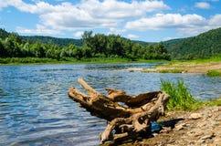 在一条美丽的河的河岸的夏日在蓝天下 图库摄影