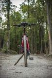 在一条肮脏的路的自行车 免版税图库摄影