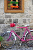 在一条街道的一辆美丽的带淡红色的自行车有绿色背景 免版税库存图片