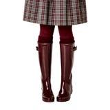 在一条裙子的女性腿在笼子,在伯根地裤袜和在c 库存照片
