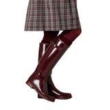 在一条裙子的女性腿在笼子,在伯根地裤袜和在c 免版税库存照片