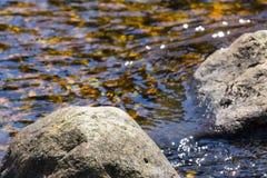 在一条起泡的小河的岩石 免版税库存照片
