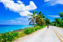 在一条路的一边的棕榈树在圣安德烈斯,哥伦比亚在美好的海滩背景中 库存图片