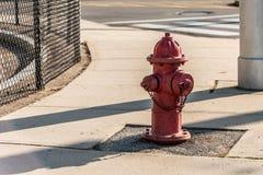 在一条边路的一个红火消防栓在波士顿城市设置的马萨诸塞美国 免版税库存图片