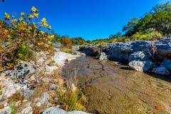在一条透明的小河的秋叶在得克萨斯小山国家  库存照片
