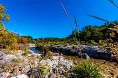 在一条透明的小河的秋叶在得克萨斯小山国家 图库摄影