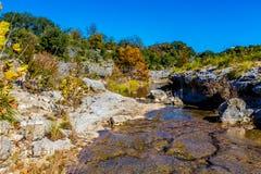 在一条透明的小河的秋叶在得克萨斯 免版税库存图片