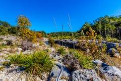在一条透明的小河的秋叶在TX小山国家  库存照片