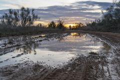 在一条道路的水坑在日落被反射的领域 免版税库存照片