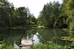 在一条镇静河的码头在夏天 木码头桥梁早晨 钓鱼的地方在河 免版税库存图片