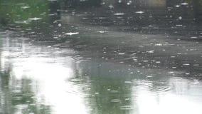 在一条镇静河的雨 股票视频