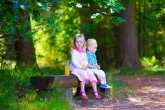 在一条长凳的孩子在夏天森林里 库存图片