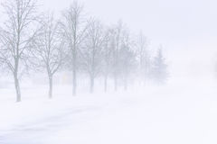 在一条高速公路的雪风暴在白天 库存图片