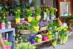 在一条巴黎人街道上的室外花市场 库存图片
