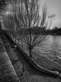 在一架舷梯的慢跑者在河塞纳河旁边 免版税图库摄影