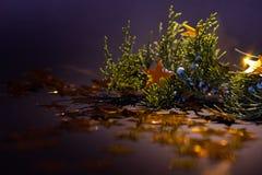 在一根云杉的枝杈圣诞装饰的金黄星 免版税库存照片