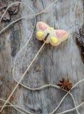 在一根棍子的曲奇饼以蝴蝶的形式 免版税库存图片