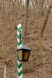 在一根镶边杆的街灯 库存图片