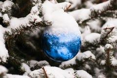 在一棵云杉的树的蓝色装饰球 图库摄影