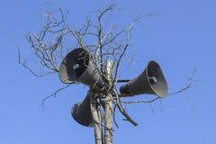 在一棵干燥树的葡萄酒hornspeakers 库存照片