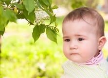 在一棵开花的樱桃附近的体贴的孩子 库存图片