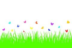 在一棵无缝的草的色的蝴蝶。 免版税库存图片