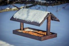在一棵树的木Birdfeeder在冬天 免版税图库摄影