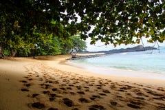 在一棵树的树荫下在一个美丽的海滩的用清楚的水在圣多美和普林西比海岛,在非洲 免版税库存图片