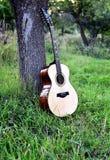 在一棵树附近的声学吉他在庭院里 免版税库存图片