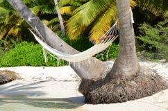 在一棵棕榈树的吊床在海滩 免版税库存照片