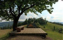 在一棵樱桃树下的长凳在山顶部 免版税库存图片
