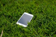 在一棵浅绿色的草安置的手机 每个电话必须有a 库存照片