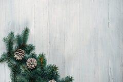 在一棵白色木背景圣诞树和锥体 免版税库存图片