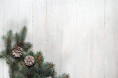 在一棵白色木背景圣诞树和锥体 免版税图库摄影