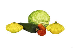 在一棵白色背景圆白菜用夏南瓜、南瓜和蕃茄 图库摄影
