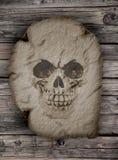 在一棵老纸莎草的一块人的头骨 库存照片