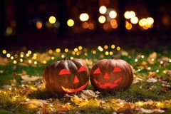 在一棵草的两个微笑的万圣夜南瓜与光在一个公园在晚上 图库摄影