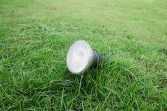 在一棵草的庭院灯在公园 免版税库存图片