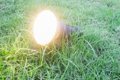 在一棵草的庭院灯在公园 免版税库存照片