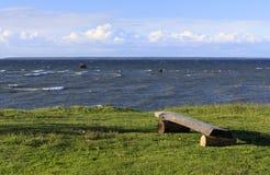 在一棵草的木长凳在海岸 库存图片
