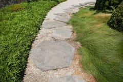 在一棵草的石走道在夏天公园 免版税库存照片