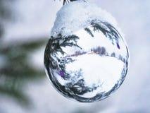 在一棵街道树的白色圣诞节球在雪下 免版税库存图片
