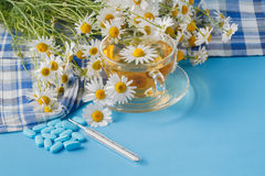在一棵透明杯子和春黄菊的甘菊茶在桌上开花 图库摄影