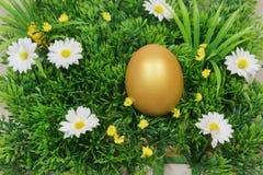 在一棵绿色人为草的鸡蛋 免版税库存图片