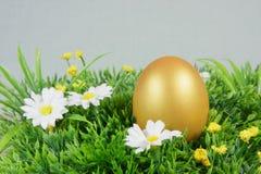 在一棵绿色人为草的鸡蛋 免版税图库摄影