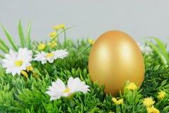 在一棵绿色人为草的鸡蛋 库存照片