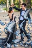 在一次照片射击的新娘夫妇与在Notre Dame的鸠,对,法国 免版税库存图片