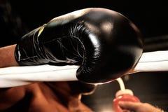 在一次职业拳击比赛期间的拳击手套 库存图片