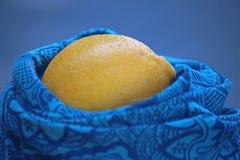 在一次蓝色抛光的黄色柠檬刚孵出的雏 图库摄影